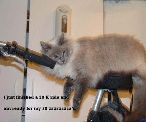 Chloe on the bike 5 30 10