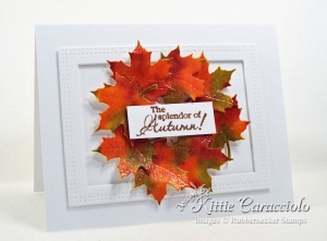 Fall Card Review