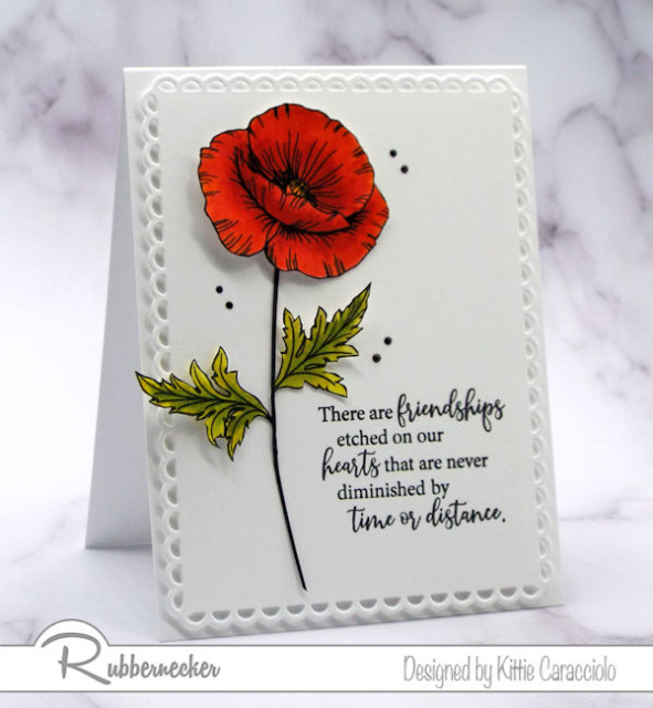 This CAS poppy card was made with some simple stamped images and a few small design elements that make it a card useful for many occasions